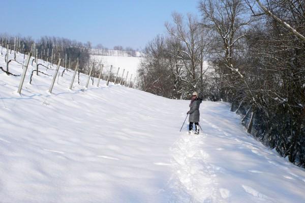 Ciaspolate Parma - Ciaspole - Neve - Colline innevate