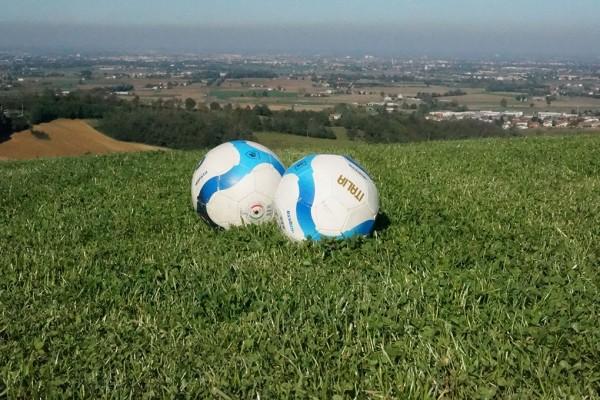 giochi bambini agriturismo al vigneto parma palloni calcio